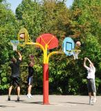 Basketbalový koš - model STREET RIGON